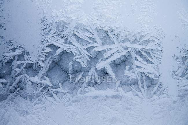 Closeup frost winter pattern on window — Stock Photo