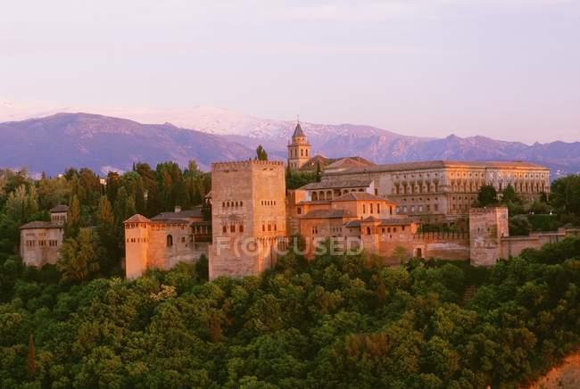 Vista del antiguo castillo en la colina - foto de stock
