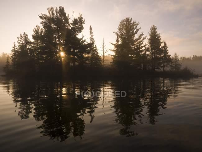 Деревья, свое отражение в озере — стоковое фото