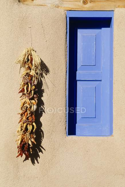 Blue Window And Chili Peppers — Stock Photo