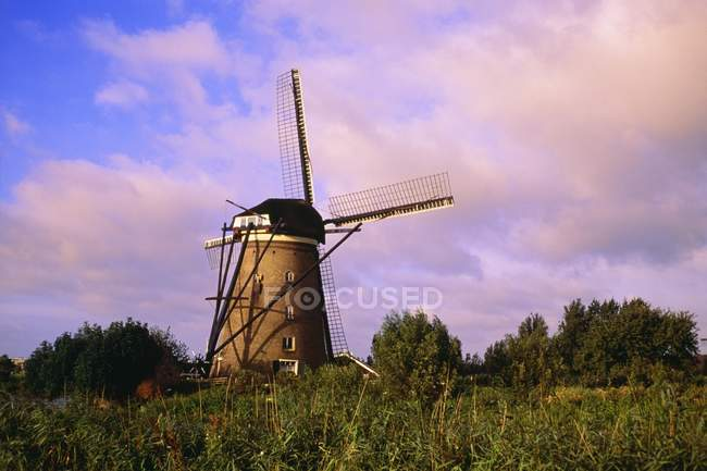 Molinos de viento en Kinderdijk, Países Bajos - foto de stock