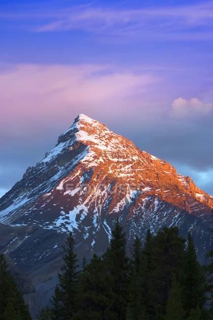 Sommet de la montagne au Mont Chephren — Photo de stock