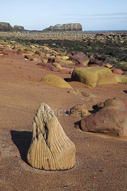 Sandstrand mit Steinen — Stockfoto