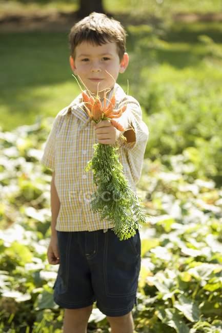 Хлопчик тримає Свіжезібрані морква — стокове фото