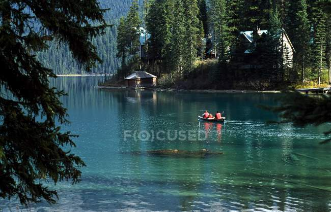 Fluss, umgeben von Wald — Stockfoto