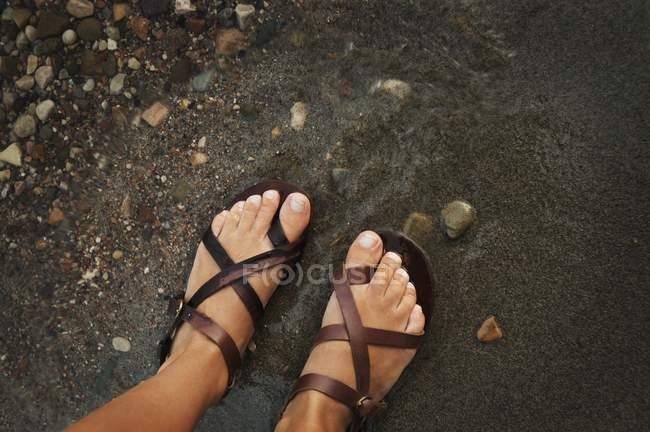 Sandalenfüße an Land — Stockfoto