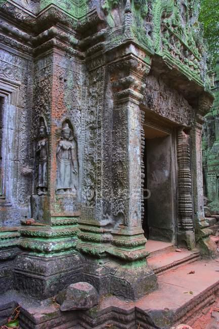 Ta Prohm Bas Reliefs — Foto stock