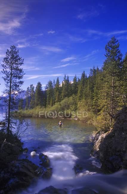 Cena de natureza com lago — Fotografia de Stock