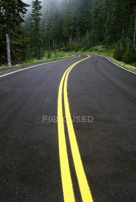 Strada attraverso la foresta nebbiosa — Foto stock