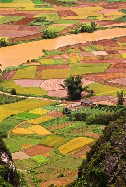Rice Fields, Yangshuo — Stock Photo