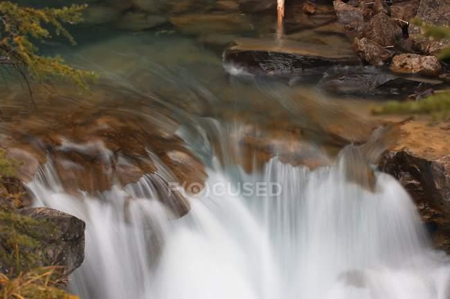 Ruscello di montagna In Banff — Foto stock