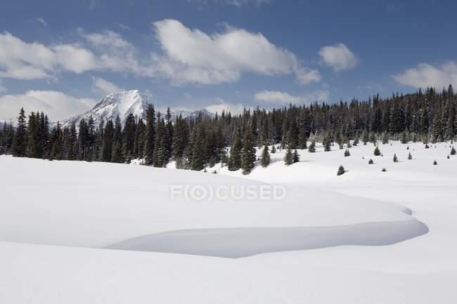 Сугробы снега и горы — стоковое фото