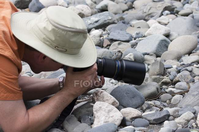 Man Photographing  Garter Snake — Stock Photo