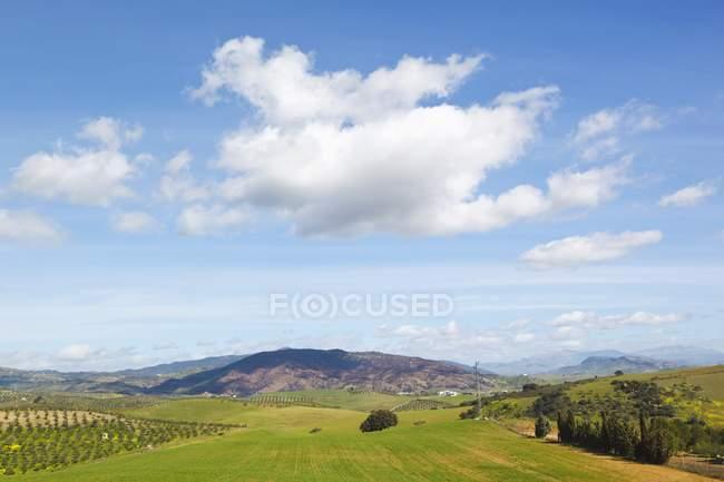 Paisagem agrícola perto de Alozaina — Fotografia de Stock