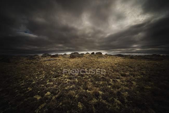 Campo gramado com pedras — Fotografia de Stock