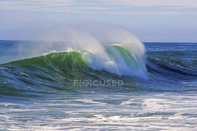 Large Curl On Ocean Wave — Stock Photo