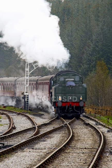 Scenic View of Train On Railroad Tracks — Stock Photo