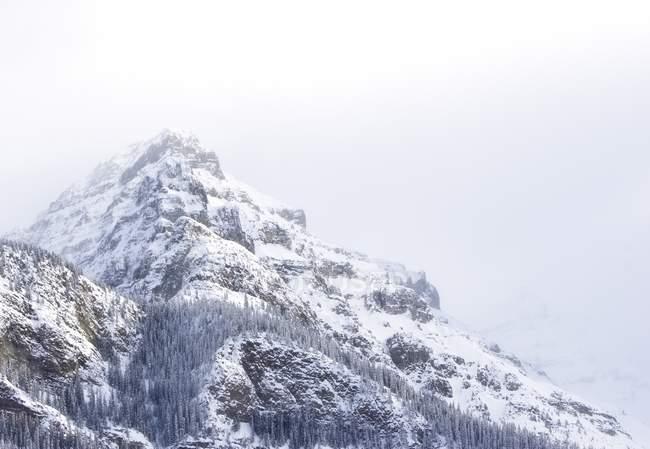 Berge mit Schnee bedeckt, — Stockfoto