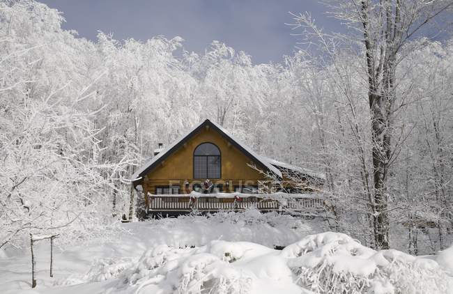 Log House In Winter — Stock Photo