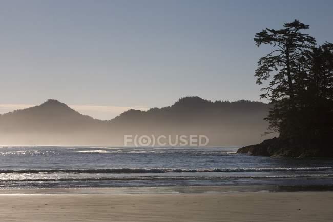 Chesterman на пляжі, Tofino — стокове фото