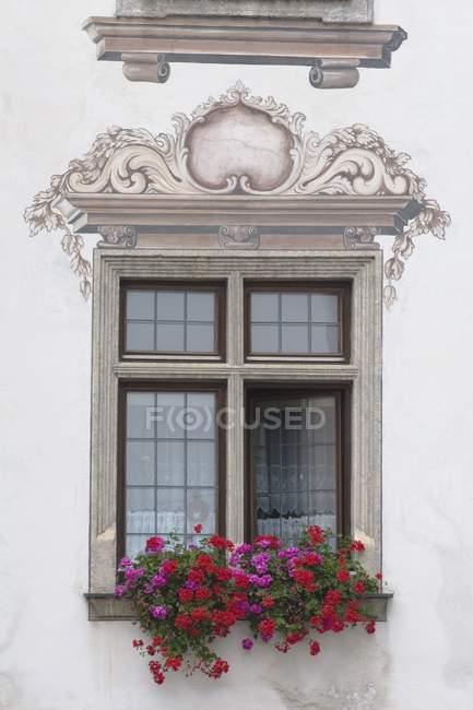 Decorative Window With Box — Stock Photo