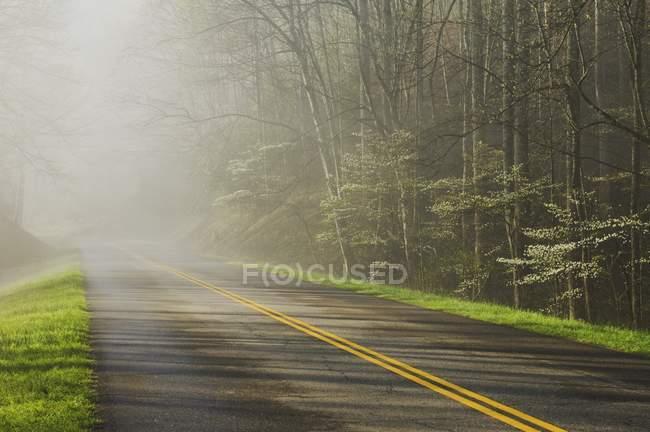 Grande lago Smoky Mountains National Park — Fotografia de Stock