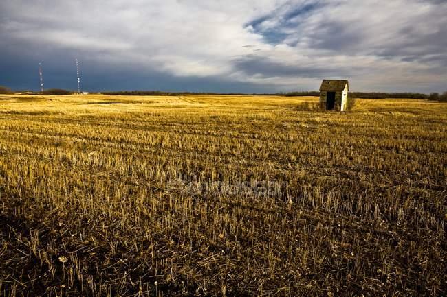 Shack no campo contra o céu — Fotografia de Stock