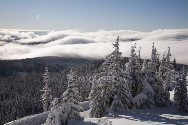 Snowy mountains During Winter — Stock Photo