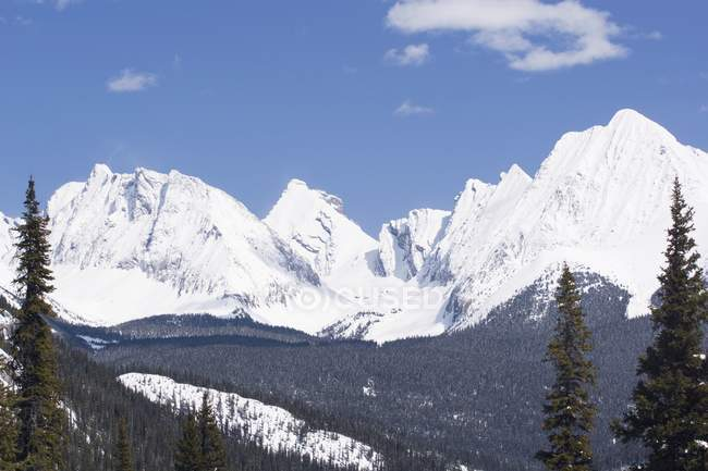 Kananaskis snow covered mountains — Stock Photo