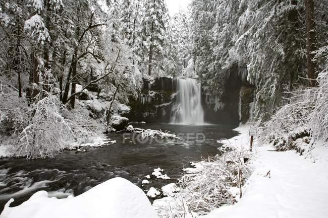 Cachoeira no rio no inverno — Fotografia de Stock