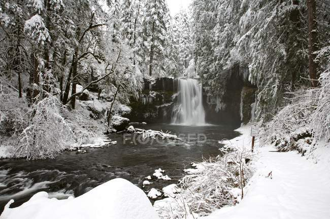 Wasserfall, Fluss im Winter — Stockfoto
