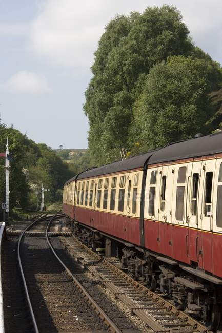Train In Levisham at England — Stock Photo