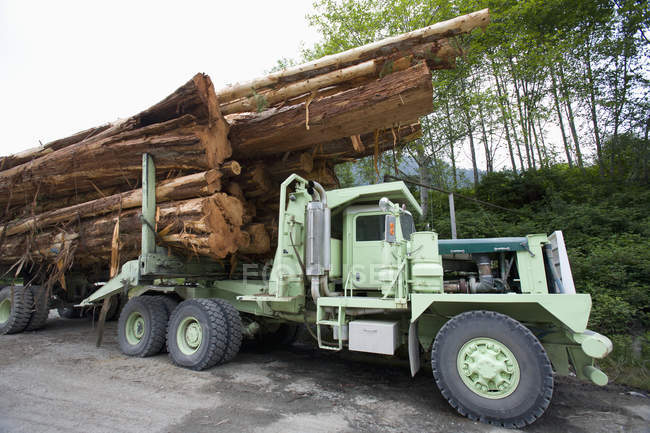 Logging truck stacked with cedar logs in British Columbia, Canada — Stock Photo