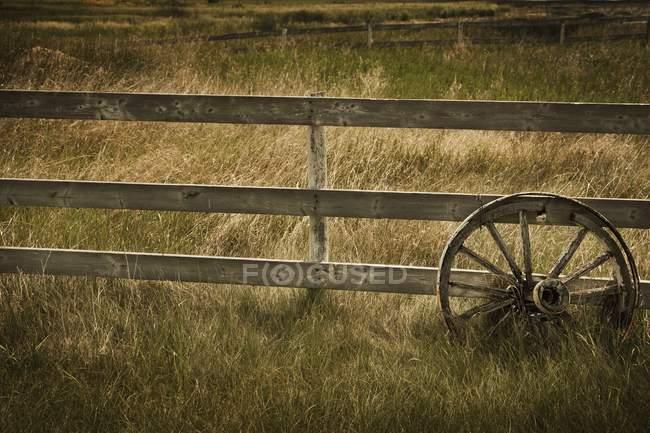 Roue de wagon contre la clôture — Photo de stock