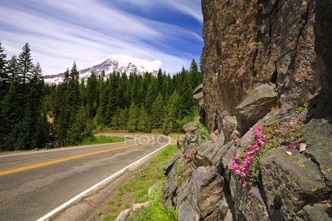 Rural highway road — Stock Photo