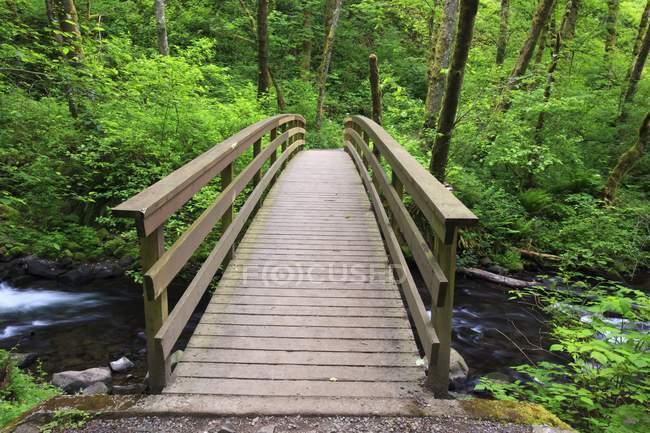 Un puente que cruza el arroyo del velo nupcial - foto de stock