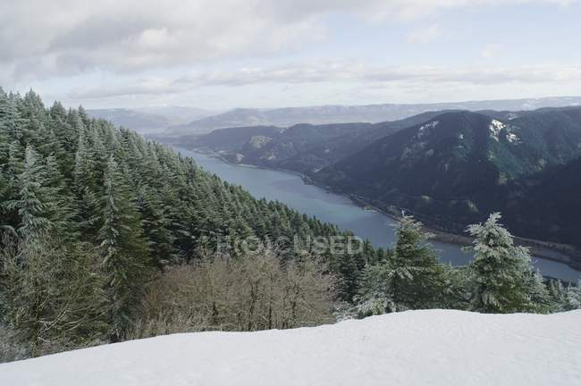 Columbia River Gorge From Dog Mountain — Stock Photo