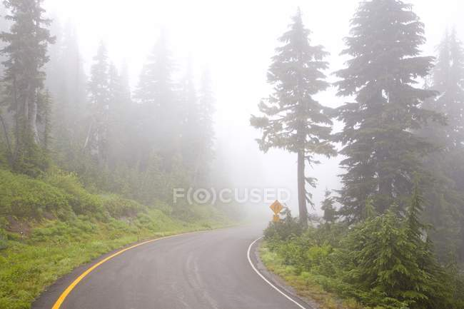 Foggy Road of Mount Rainier National Park — Stock Photo