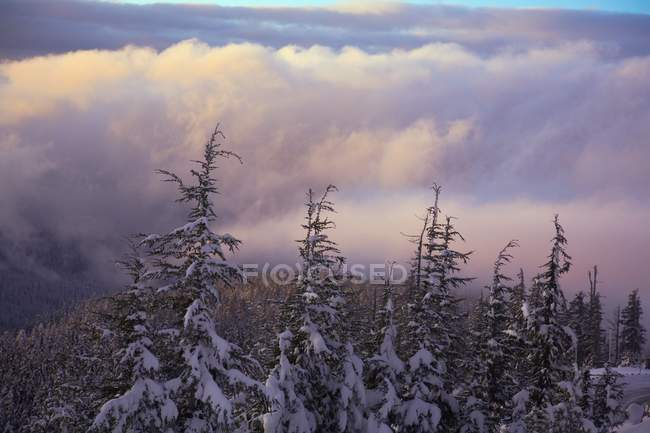Sunrise, Mount Hood, Oregon — Stock Photo