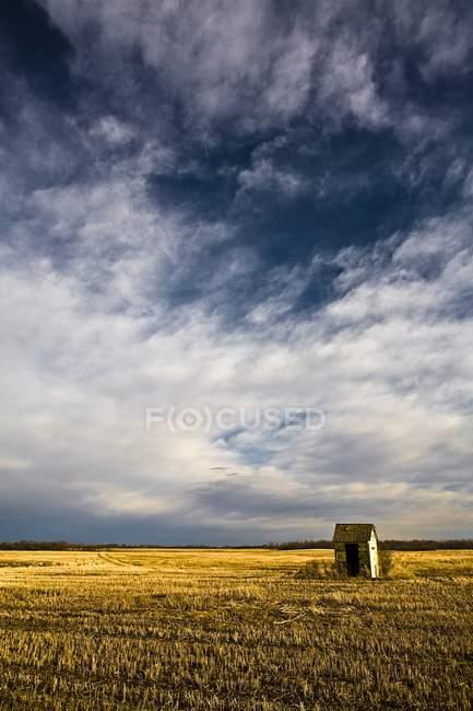Shack em campo gramado — Fotografia de Stock