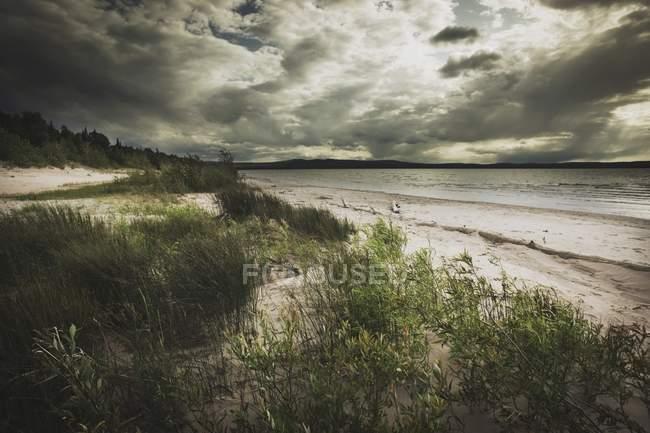 Le rivage du lac des Esclaves — Photo de stock