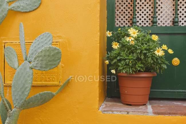 Yellow Building With Door — Stock Photo
