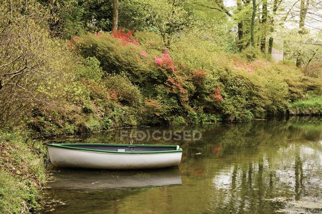 A Boat In The Stream In Dartmoor National Park — Stock Photo