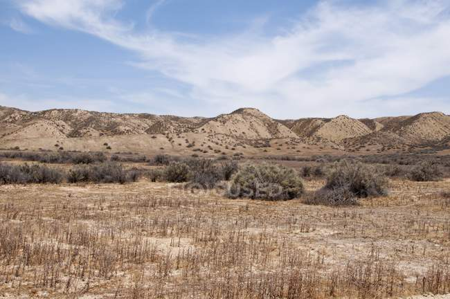 Plains with hills and plants — Stock Photo