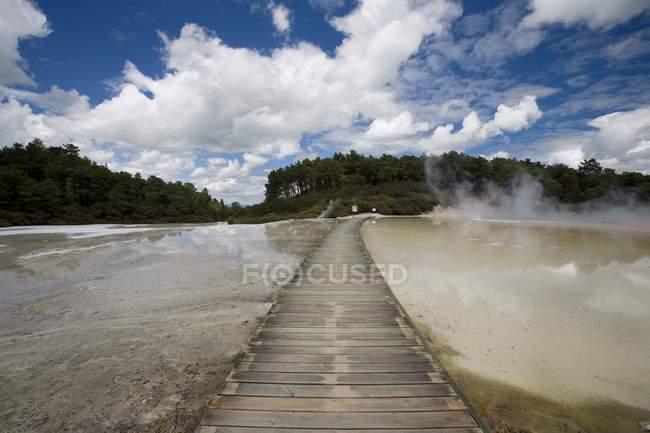 Ponte no Site geotérmica Wai-O-Tapu — Fotografia de Stock