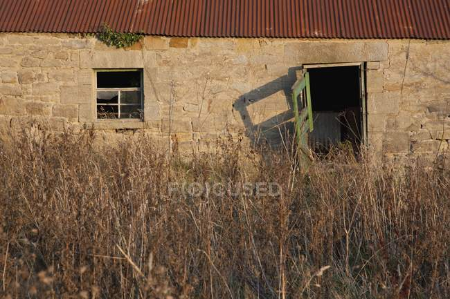 Building With Tall Grass — Stock Photo