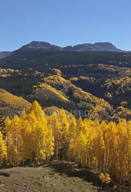 Paysage d'automne des montagnes de San Juan — Photo de stock