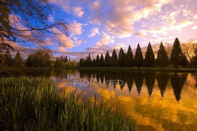 Reflexão do pôr do sol na lagoa — Fotografia de Stock