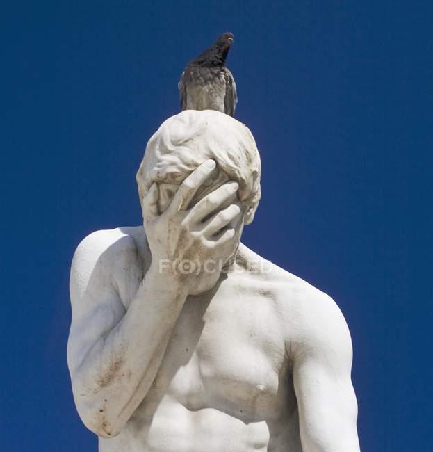 Голубь, сидящего на статую человека — стоковое фото