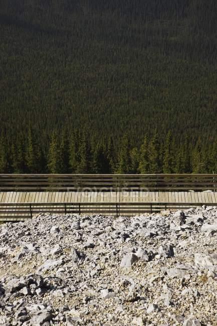 Calçadão de madeira com trilhos — Fotografia de Stock